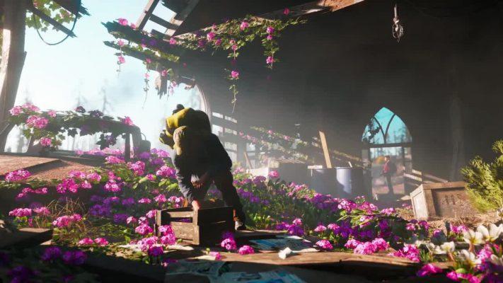 Niente modalità Arcade per Far Cry New Dawn