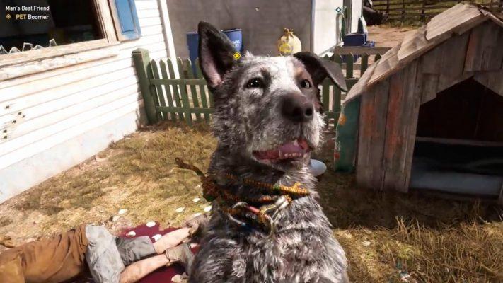 videogiochi cani