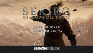 Sekiro: Shadows Die Twice – Tutti i 9 Semi di zucca   Guida